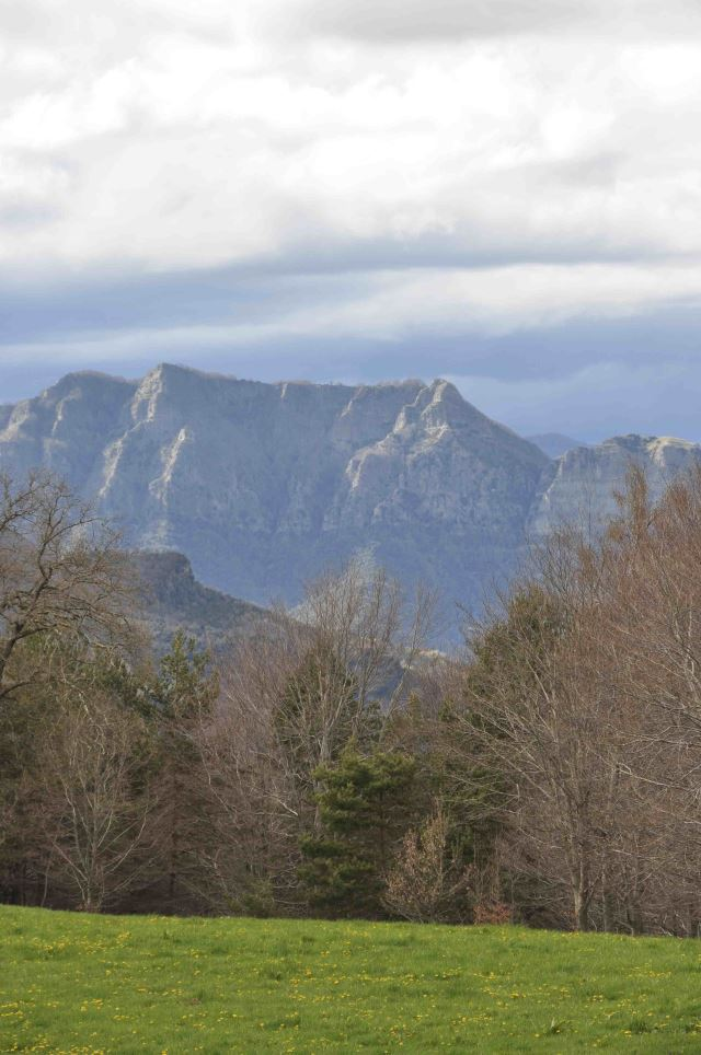 Catalan Hills - near Mas la Serra - © Dee Mahan