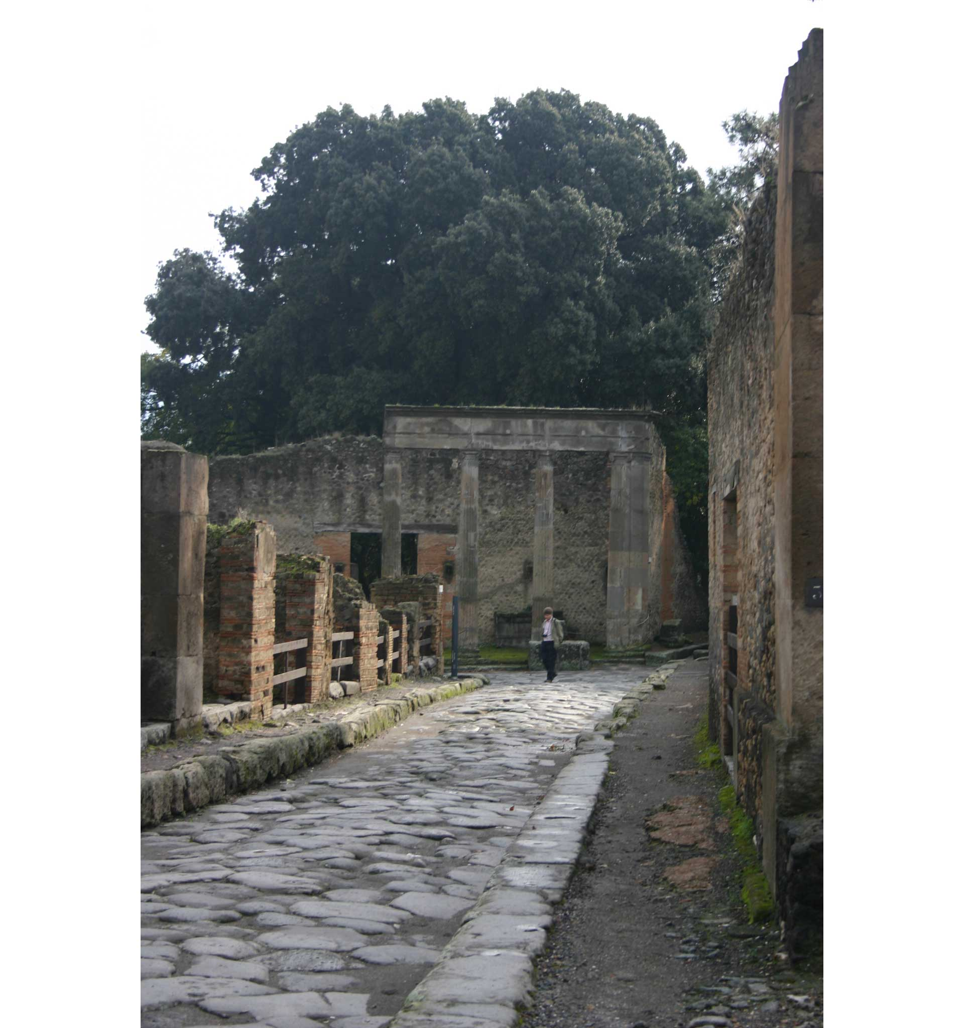 Pompeii - the street - © William Mackesy