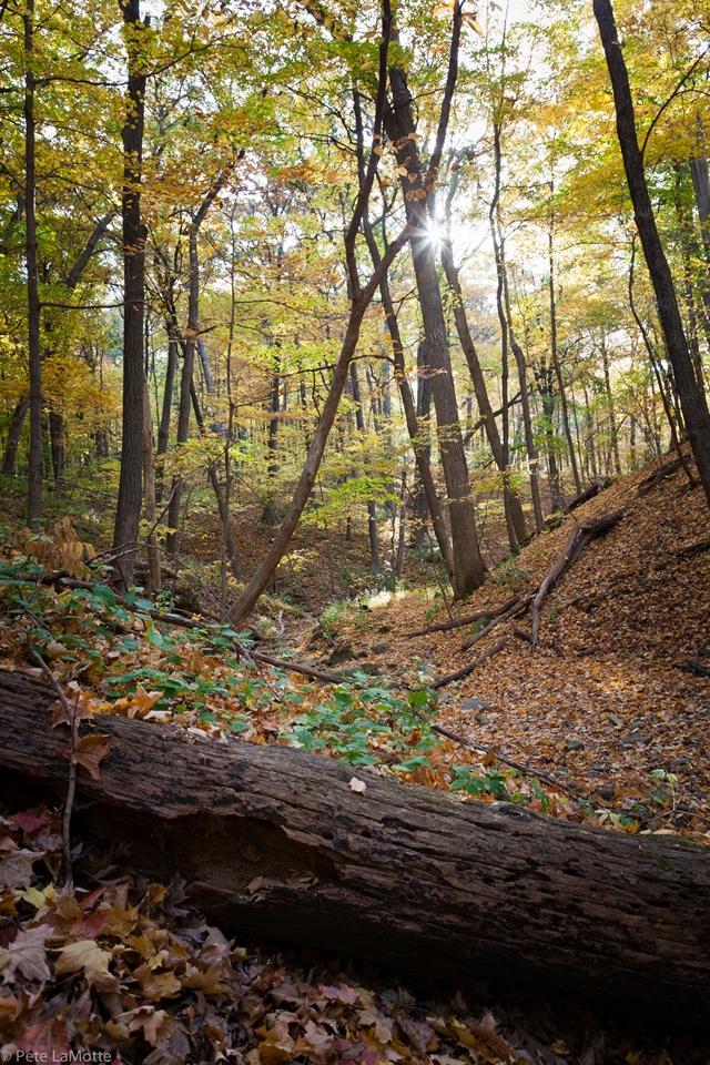 USA Mid-west, Matthiessen State Park, Matthiessen state park , Walkopedia