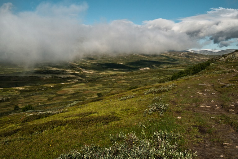 Dovrefjell in cloud - © Flickr user Roman Konigshofer
