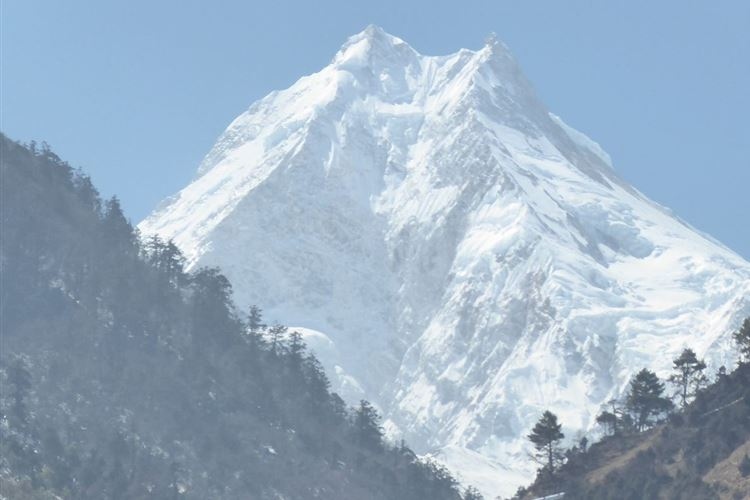 Manaslu Circuit: Manaslu (8163 metres) from Lho at 3180 metres - © Dick Everard