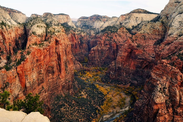 Looking North from Angels Landing, Zion National Park - © Andrew Mace