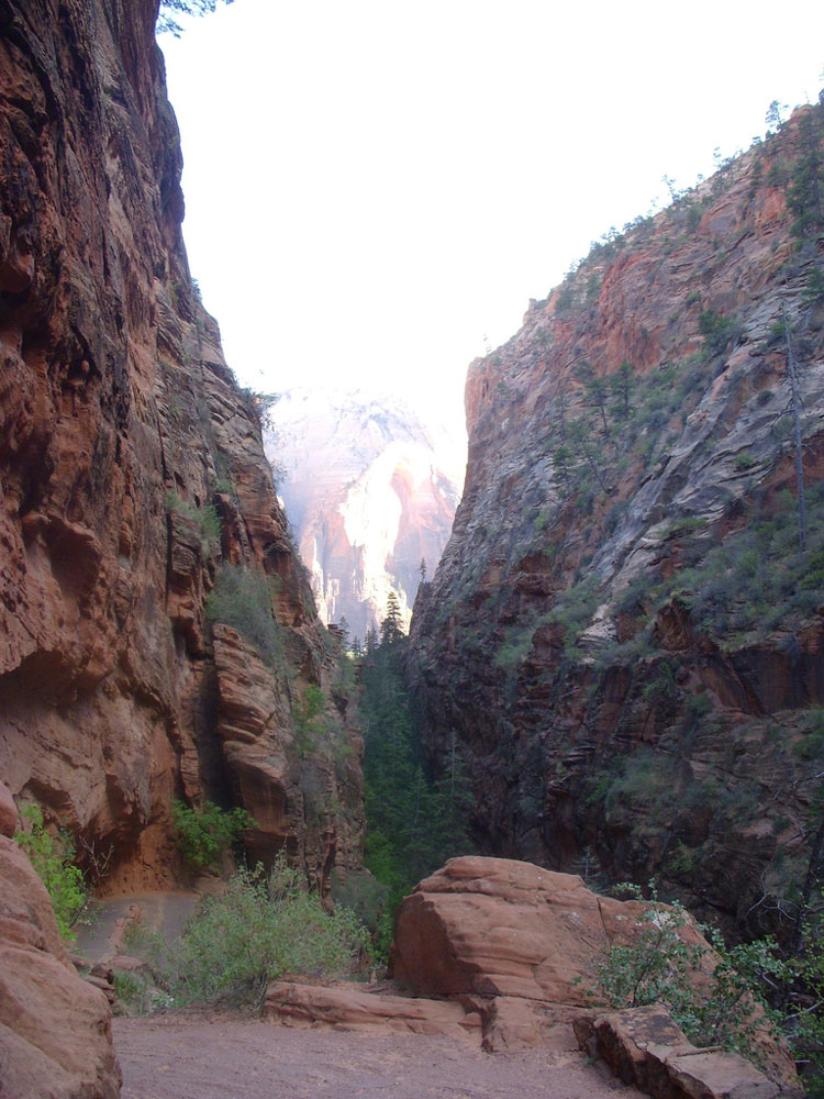 "On the Angel""s Landing Trail - © By Flickr user RickBradley"