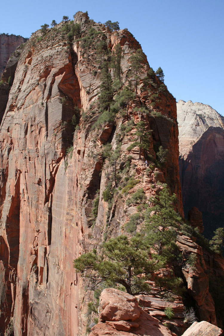 "Angel""s Landing impossibe ridge - © By Flickr user ccharmon"