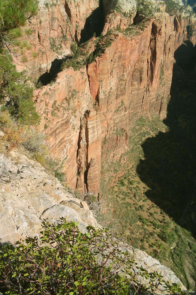 "Zion National Park, Angel""s Landing - © By Flickr user wayne31r"