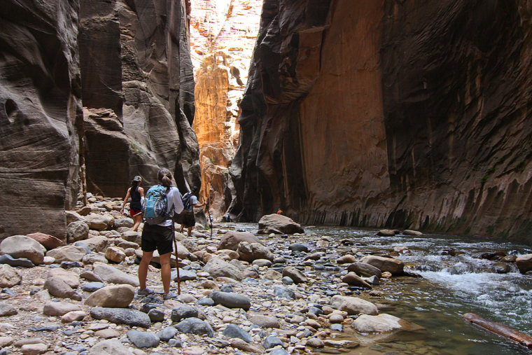 Zion Canyon Narrows  - © Flickr user Ada Be
