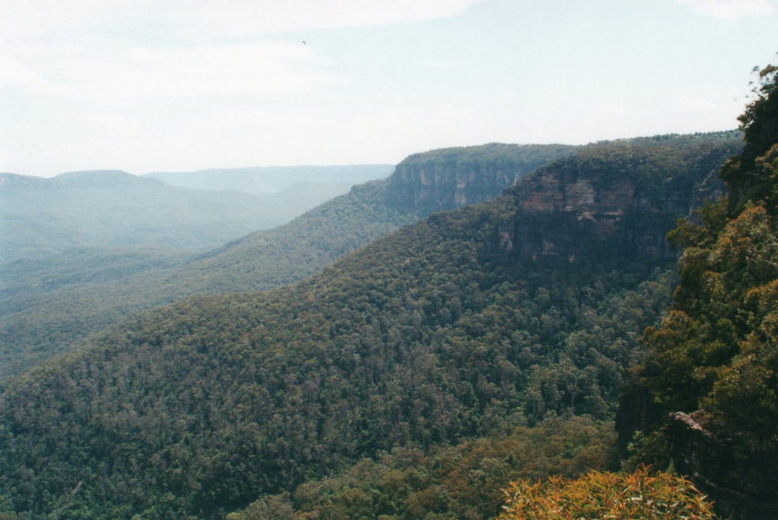 Blue Mts from Wentworth falls area - © William Mackesy