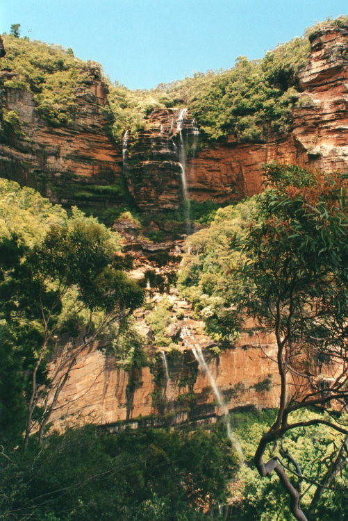 Wentworth Falls - © William Mackesy