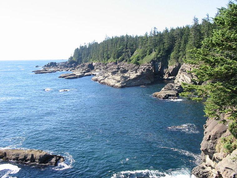 West Coast Trail: WestCoastTrailCost2  - © wikimedia user Jonathan.s.kt
