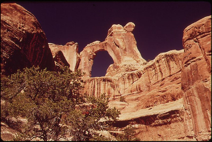 Upper Salt Creek: Angel Arch, famous rock formation - © wiki commons user David Hiser