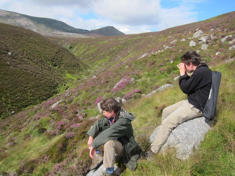 Lochnagar and Loch Muick: Bird watching below Meikle Pap - © William Mackesy