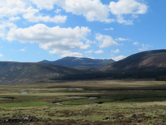 Lochnagar and Loch Muick: Lochnagar across Glen Muick - © William Mackesy