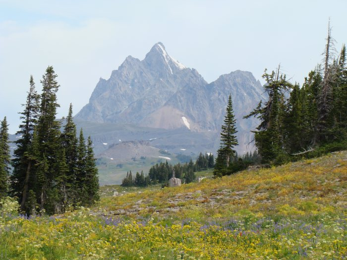Teton Crest Trail - The Grand - © Copyright Flickr User rbbaird