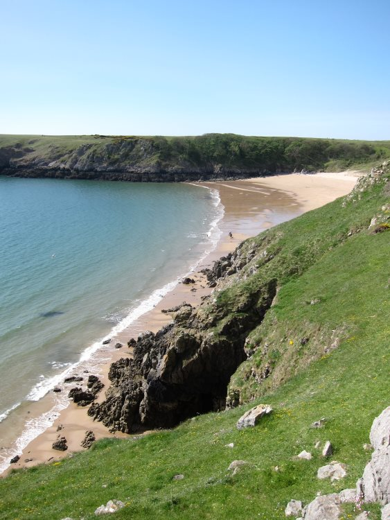 Pembrokeshire Coast Path: West over Barafundle Bay - © William Mackesy