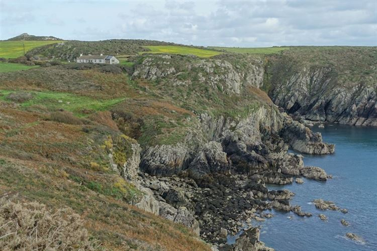 Pembrokeshire Coast Path: Pembrokeshire Coastal Path: Solva to St Davids section - © Christopher J. Etchells