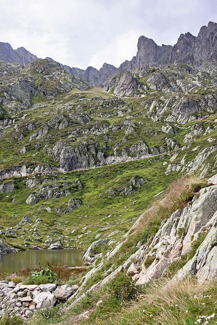 Aiguilles Rouges: La Reserve des Aiguilles Rouges - ? From Flickr user Giam