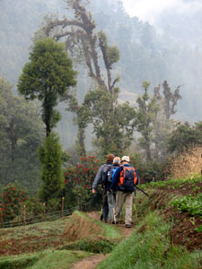 India Sikkim and nearby, Singalila Ridge, Leaving Samanden, Walkopedia