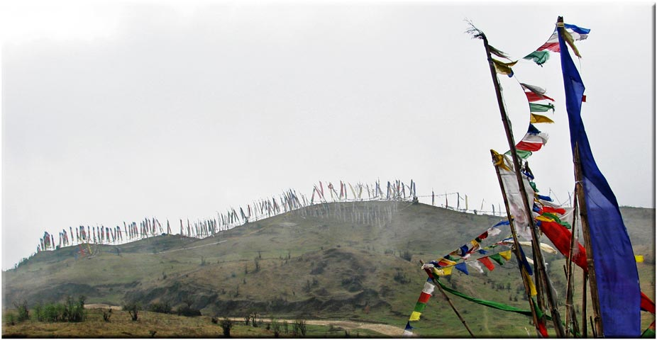 Prayer flags at Meghma - © David Briese, www.gang-gang.net/nomad