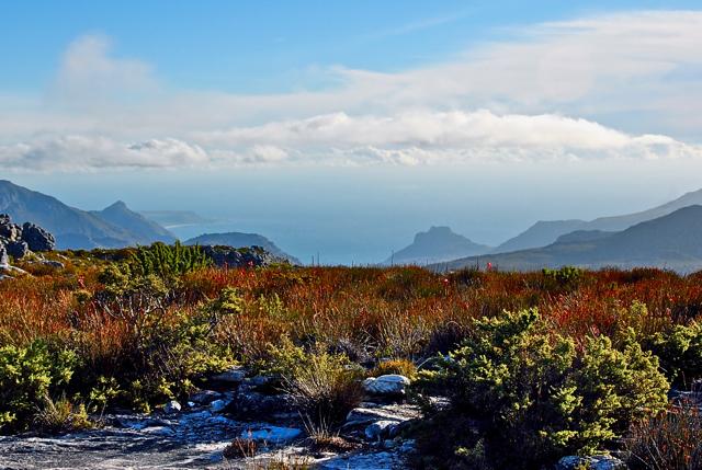 Table Mountain: © Alia Sovcourse