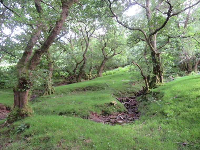 United Kingdom Wales Black Mountains, Hatterrall Ridge, Black Mountain flank, Walkopedia