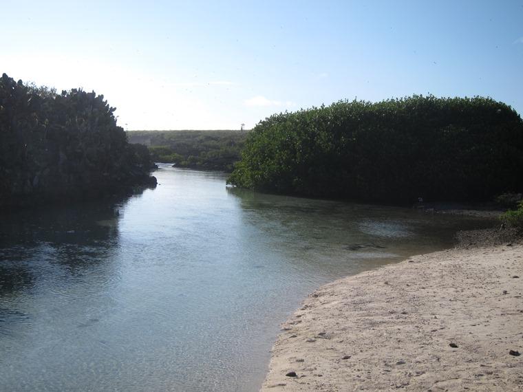 Ecuador Galapagos Islands, Galapagos Islands, Inlet, Genovesa, Walkopedia