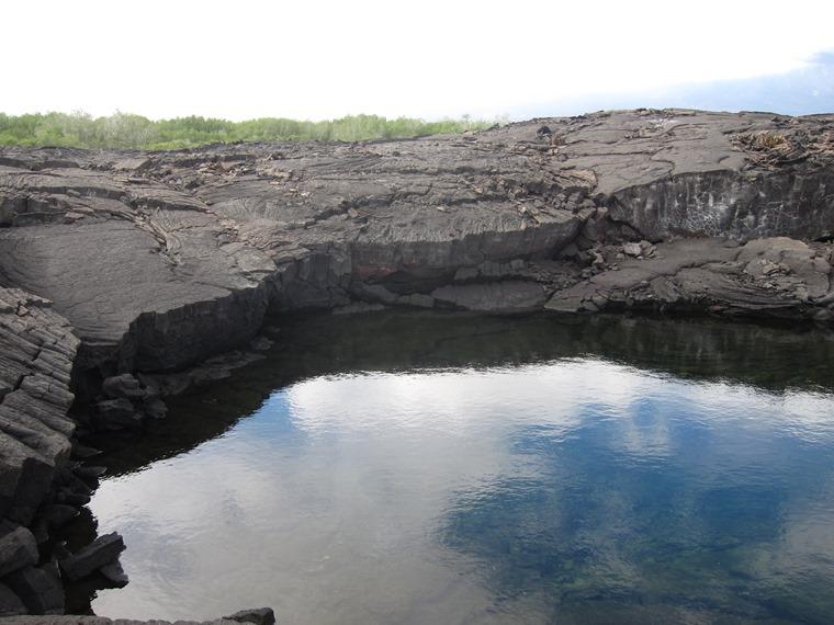 Ecuador Galapagos Islands, Galapagos Islands, Collapsed lava field, Punta Espinoza, Fernandina, Walkopedia