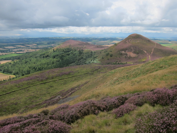 Eildon Hills - middle and south hills from north hill - © William Mackesy
