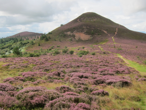 The Borders: Eildon Hills - middle hill from saddle - © William Mackesy