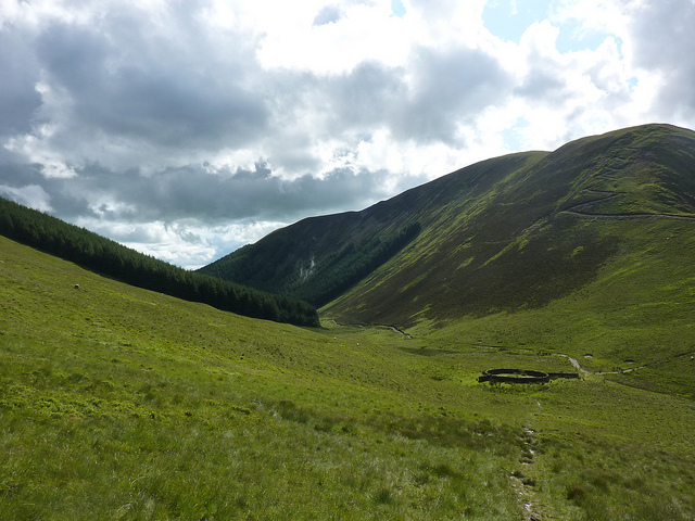 The Borders: Southern Uplands Way - sheep pen and forest  - © flickr user Andrew Bowden