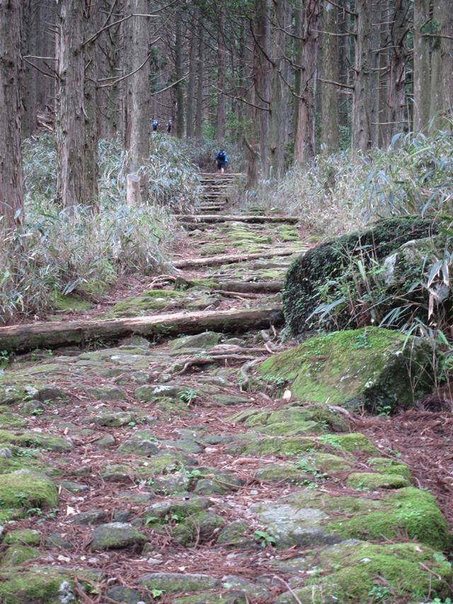 Kumano Kodo: Nakahechi - Chest Bursting Slope  - © William Mackesy