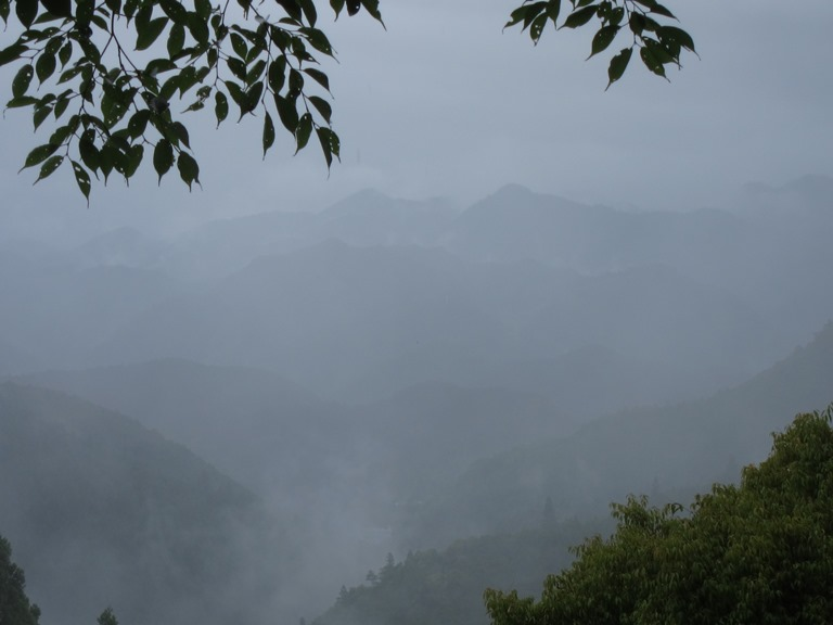 Kumano Kodo: Nakahechi -Classic mists  - © William Mackesy