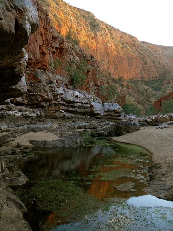 Australia Northern Territory, Ormiston Gorge and Pound, MacDonnel Ranges Ormiston Gorge, Walkopedia