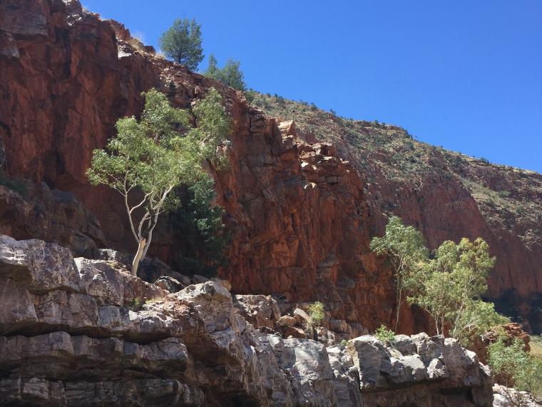 Australia Northern Territory, Ormiston Gorge and Pound, Ormiston, Walkopedia