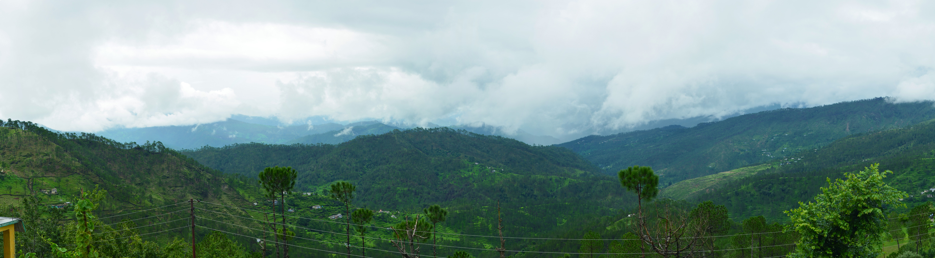 Binsar Wildlife Sanctuary: © Priyambada Nath flickr user