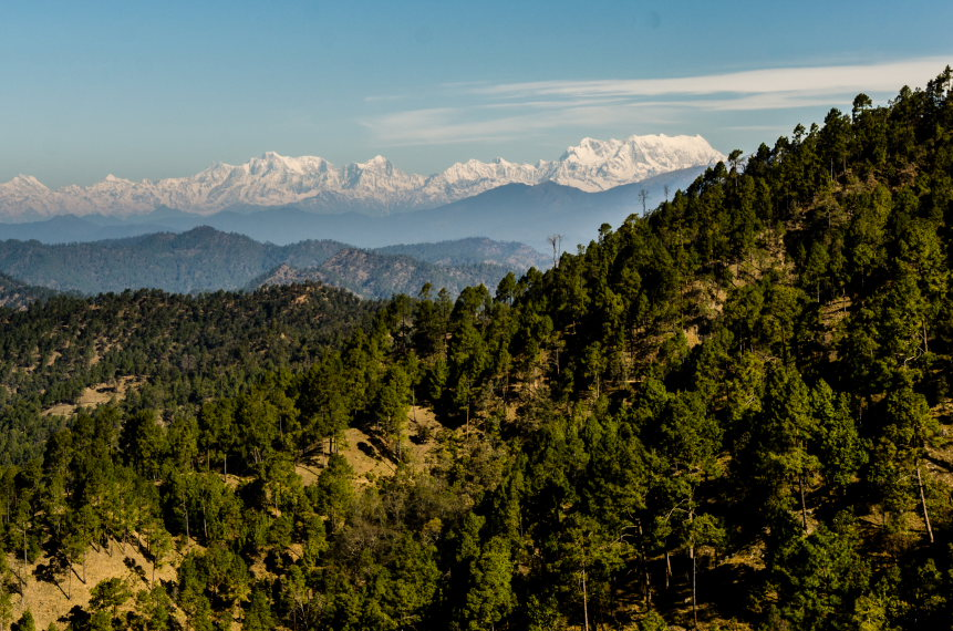 Binsar Wildlife Sanctuary: Zero Point in Binsar   - © gkrishna63
