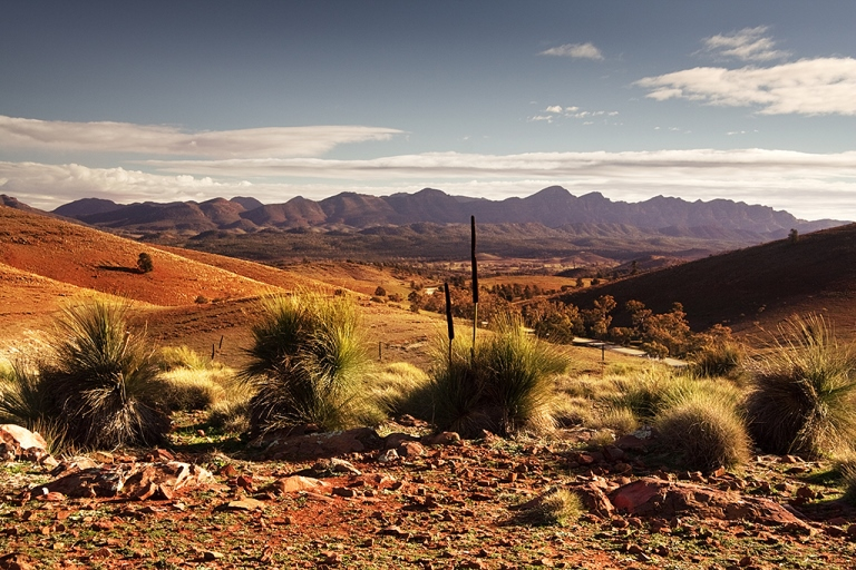 Flinders Ranges National Park - © William Mackesy