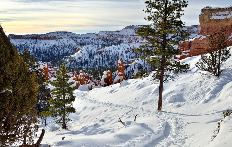 A Path in the Snow (Bryce Canyon National Park) - © Mark Stevens flickr user