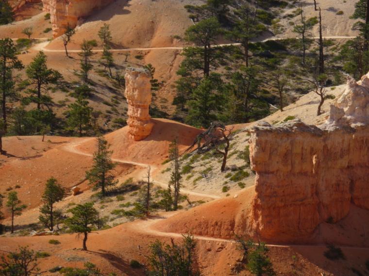 Bryce Canyon: Snaking Path - © William Mackesy