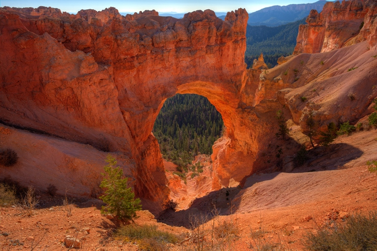 Natural Bridge, Bryce Canyon, Utah - © Diana Robinson flickr user
