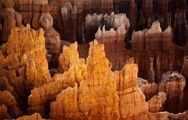 Bryce Canyon: Sunset at Bryce Canyon - © Reto Fetz flickr user