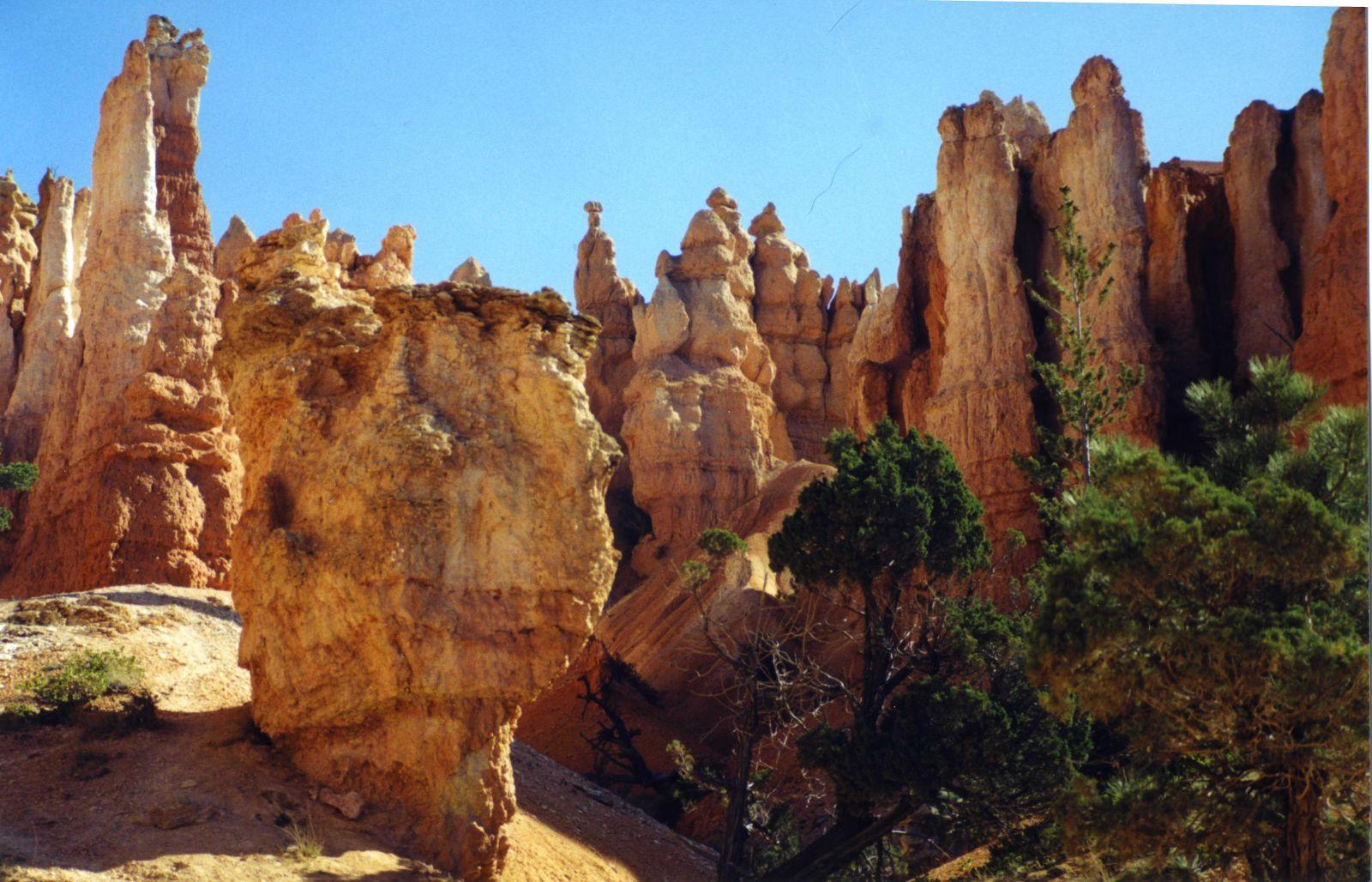 USA SW: Bryce Canyon, Peekaboo Trail, Around the middle of the hike , Walkopedia