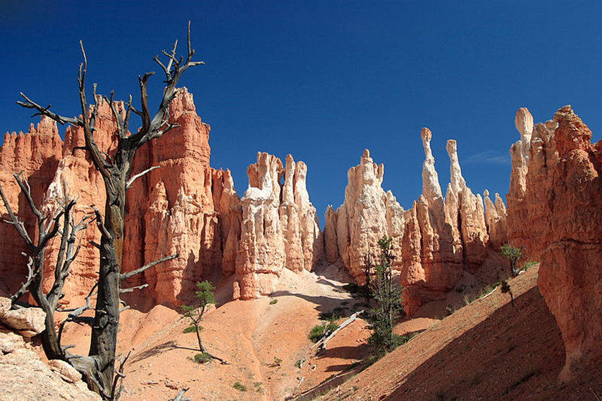 Hoodoos from the Peekaboo Loop Trail  - © wiki commons user James Marvin Phelps