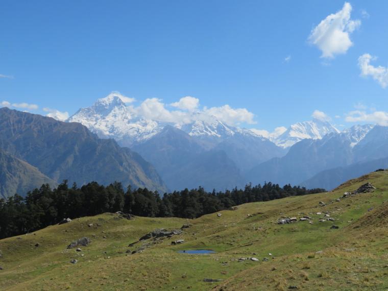 India NW: Uttarakhand/Garwhal, Nanda Devi Area, Curzon Trail, great  final day 6, Walkopedia
