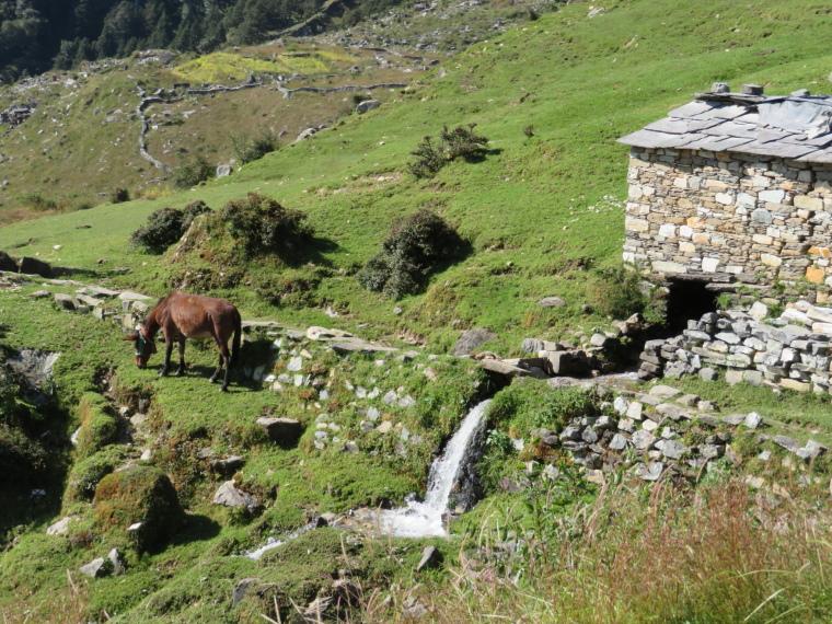 India NW: Uttarakhand/Garwhal, Kuari Pass (Curzon Trail) , Water Mill, Walkopedia