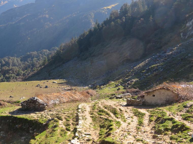 India NW: Uttarakhand/Garwhal, Kuari Pass (Curzon Trail) , Herdsmens' huts and high pasture, Walkopedia