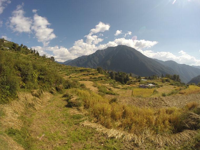 India NW: Uttarakhand/Garwhal, Kuari Pass (Curzon Trail) , Pana outskirts, day 3 , Walkopedia