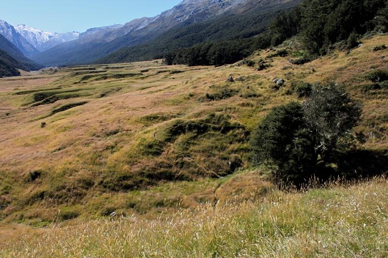Rees-Dart Track: New Zealand Hiking the ReesDart Track - ©  Eli Duke flickr user