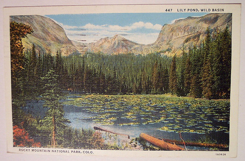 Rocky Mountain NP: vintage postcard of rocky mt Np  - © flickr user riptheskul