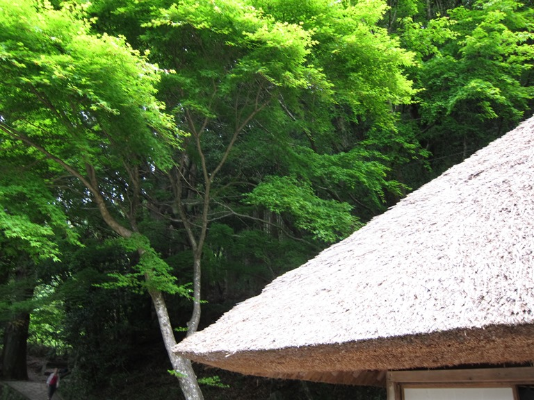 Nakahechi Trail : Old teahouse roof - © William Mackesy