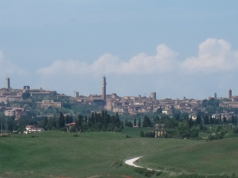 Via Francigena; San Gimignano to Montalcino: Siena from several Ks away  - © William Mackesy